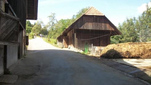 Dairy Farm on Gurten 3.jpg