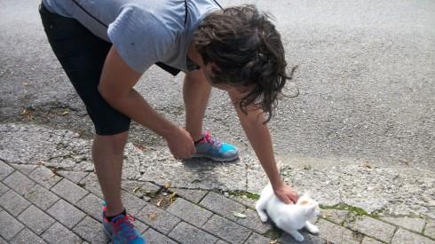 Sean Petting Cat on Gurten.jpg